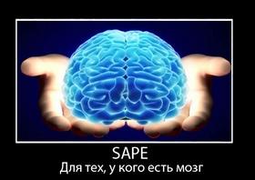 Как правильно покупать ссылки на sape